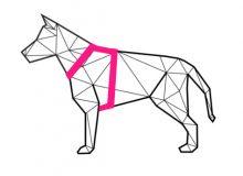 Szelki guard dla psa